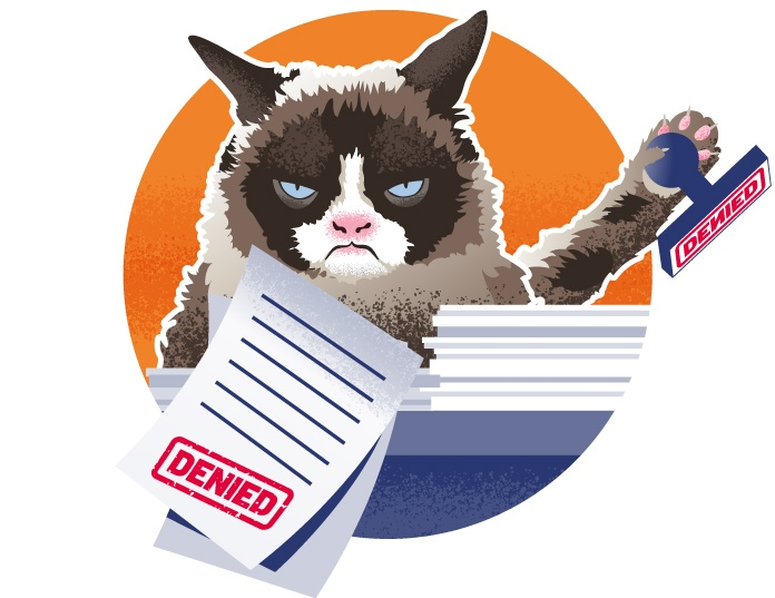 The compliance cat says no