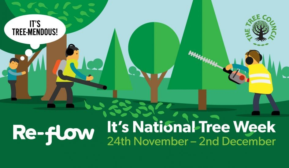 It's National Tree Week in the UK!